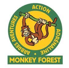 logo_monkeyforest